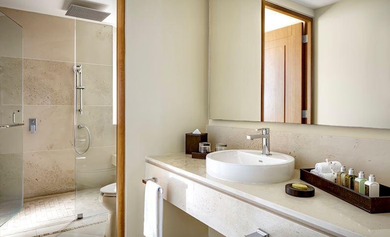 Wellness Suite Bathroom