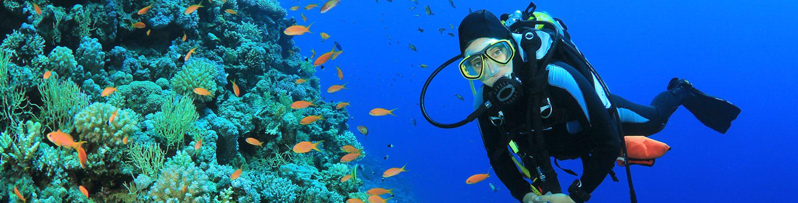 Isla de Coral en Rincón de Guayabitos